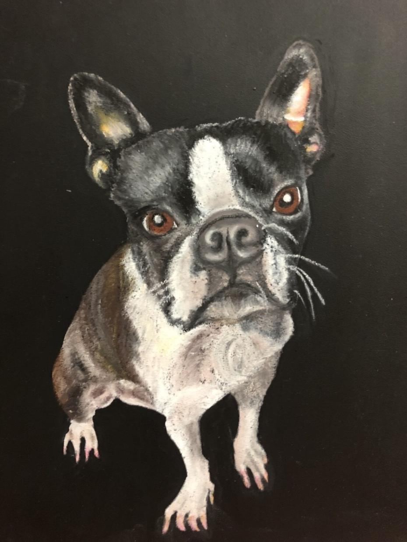 可愛いペットや動物をお好きなイメージで描きます A4特別料金3名様まで世界で1枚の素敵な絵にしませんか?