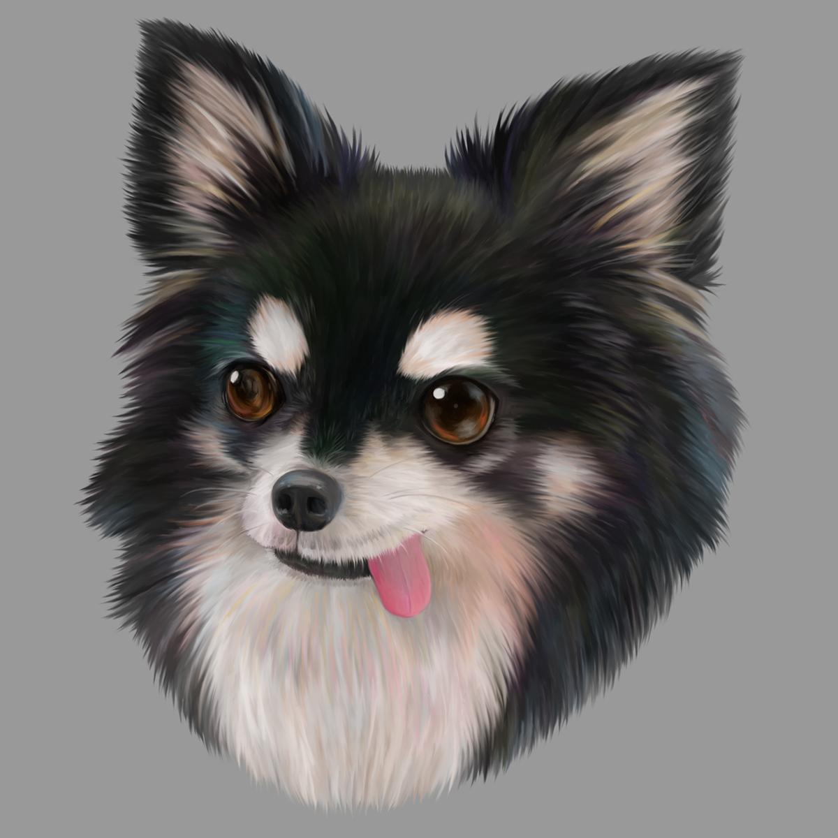 大好きなペット、動物のイラストをお描きします あなたの大好きをリアルタッチでイラストに!
