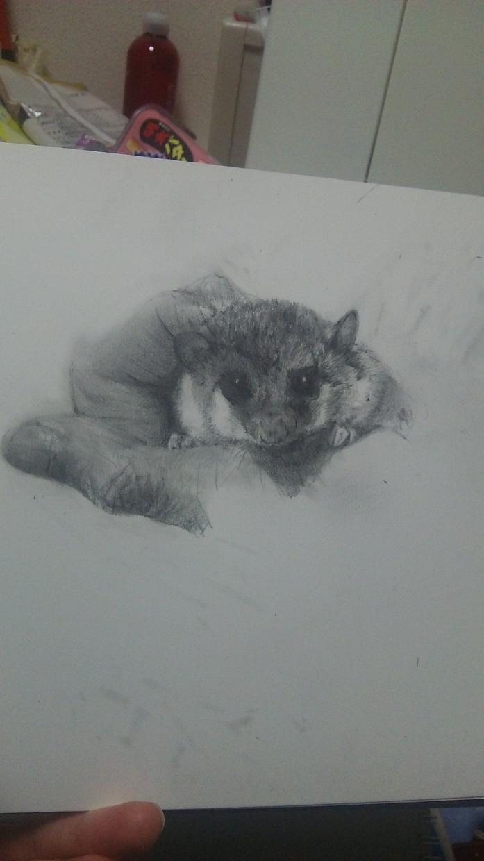 ペットの似顔絵など描きます。ます 動物の似顔絵など描きます。キャラクターデザインなども承ります