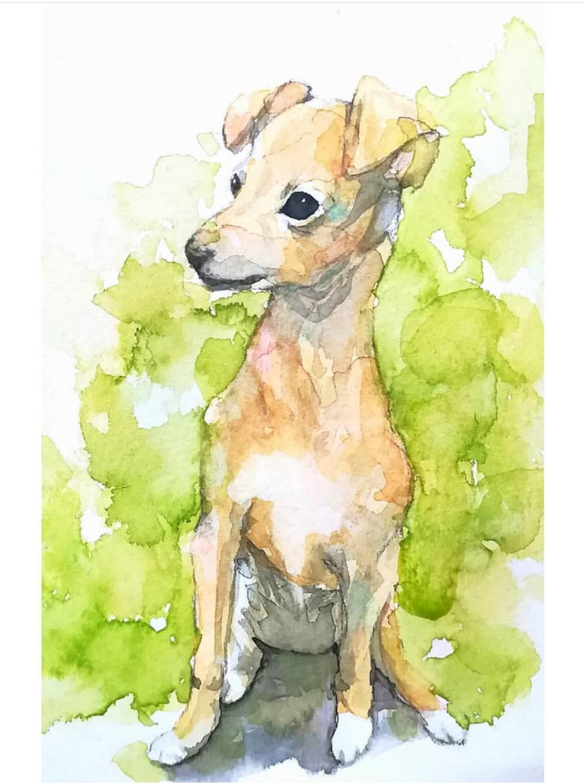 透明水彩でペットや動物の似顔絵を描きます プレゼントをお探しの方や、ペットを飼っている方へ