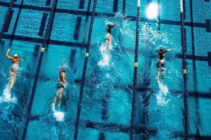 水泳のメニューを作ります 競技力向上から健康維持、促進まで