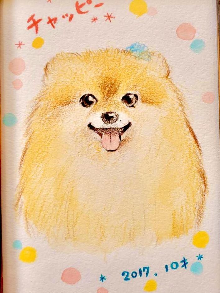 送料込 ペット似顔絵 お描きします フレームプレゼント!お写真を元にお描きします。無料修正あり イメージ1