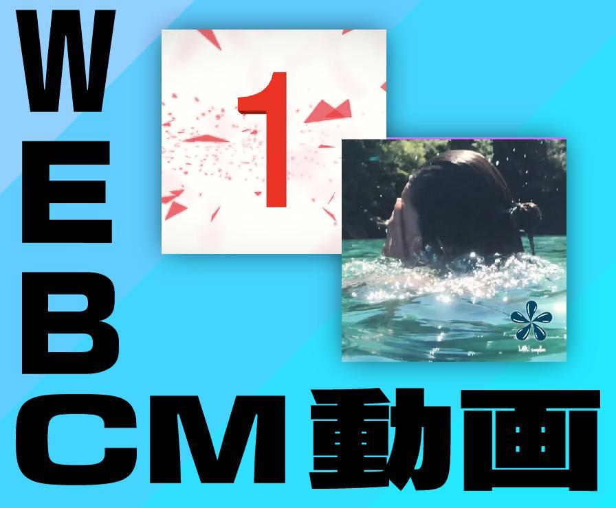 WEB・CM・動画制作します 仕様用途に応じて制作いたします。 イメージ1