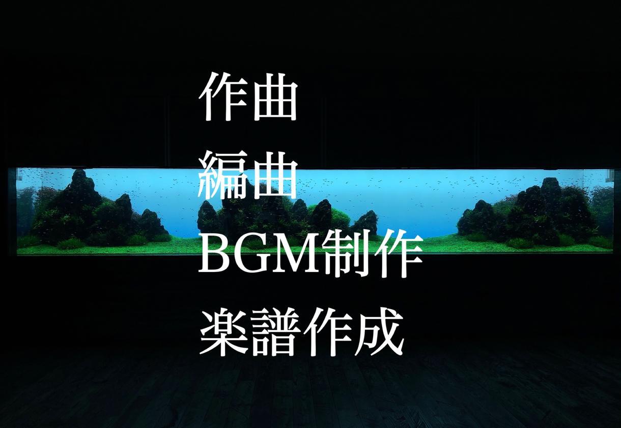 作曲、編曲、BGM制作、楽譜作成します 様々なジャンル、スタイル対応可能!現役音大生が作曲します イメージ1
