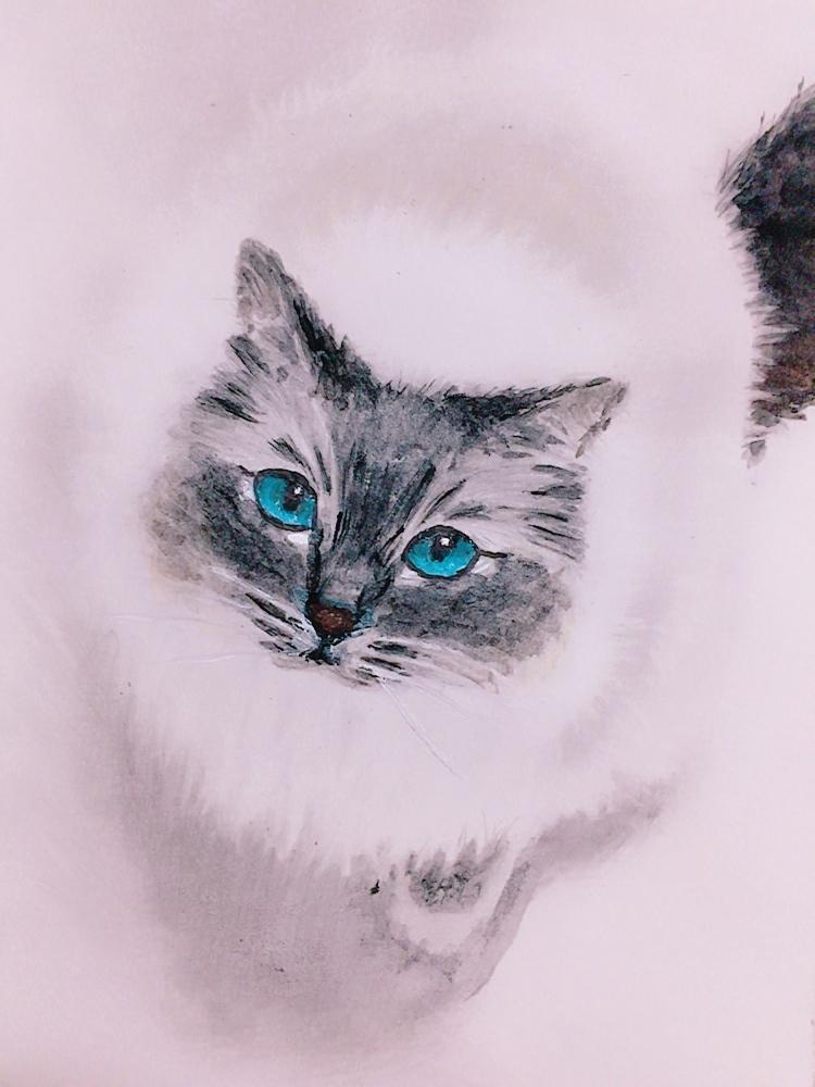あなたのペットをお描きします 大好きなペットをイラストにしてみませんか?(^^)