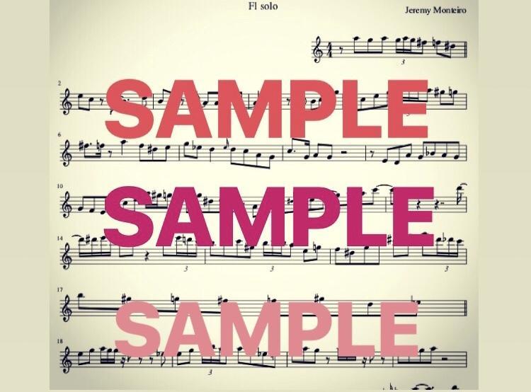 耳コピ代行♬難易度問わず譜面を採譜します ☆プロのソロやメロディをコピーして演奏したい方へ☆