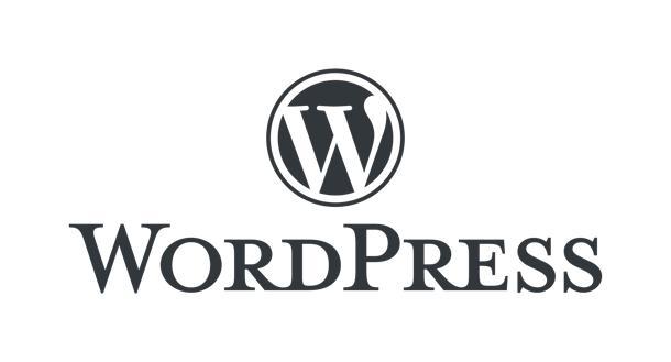 WordPressの表示速度を改善(高速化)します PageSpeed Insights モバイル100点の実績 イメージ1