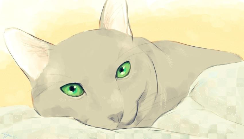 あなたの猫ちゃん、わんちゃんのデジタルイラストを描きます!