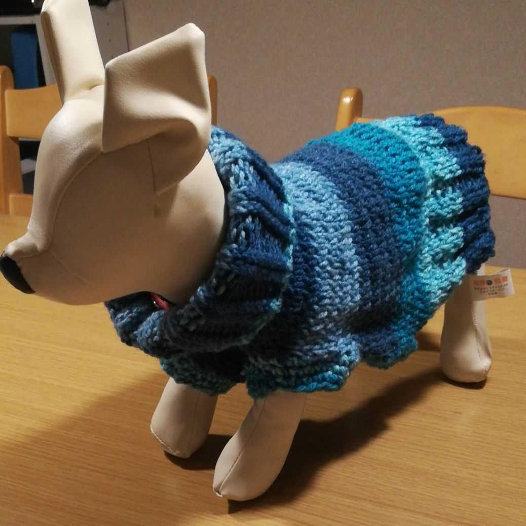 犬のセーター編みます あなたの愛犬にぴったりのセーターを編みます