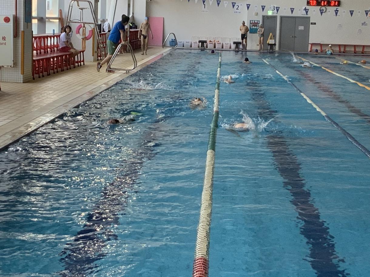 水泳に関する相談受け付けます メニュー作成、泳法研究などなど