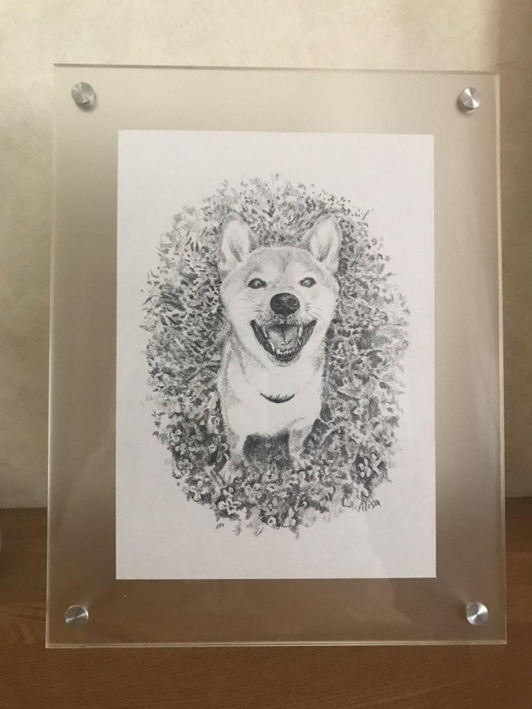 写真を元に鉛筆画を描きます 柔らかなイラストで思い出を閉じ込めませんか。