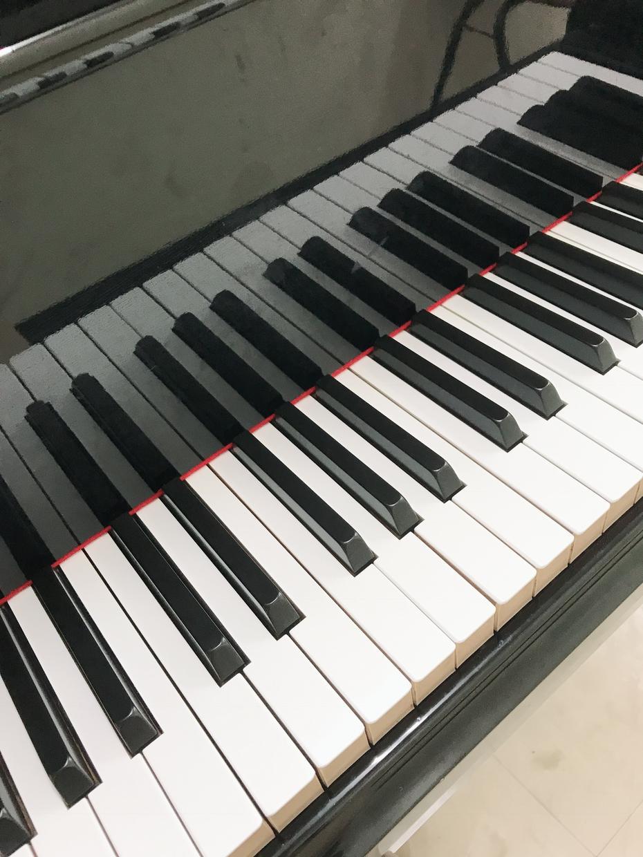 耳コピします あなたの弾きたい曲を楽譜にします【絶対音感あり】