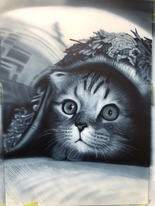 ココナラ始めました特価で、エアブラシで描きます かなりお値打ちに人物、背景、ペットなど写真を綺麗に描きます