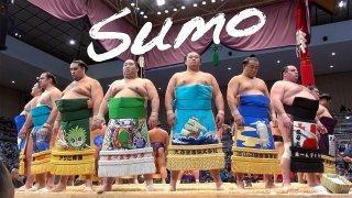 限定5名様!相撲についてのお話相手になります 九州場所期間中、相撲の話を誰かにしたいけど、通じる相手が。。
