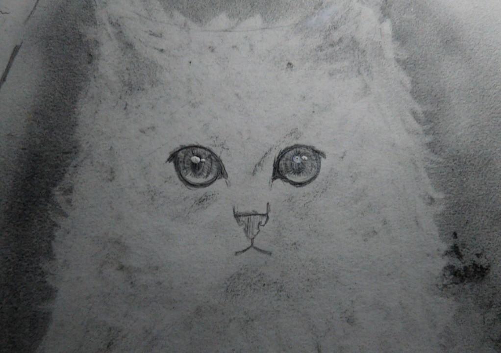 ペットの似顔絵描きます 本格的なペットの似顔絵描きます。プレゼントにも◎