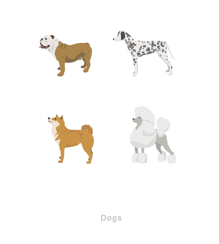 手描きのイラスト・写真をデザインしてAdobe illustrator でベクトルデータ作成します。