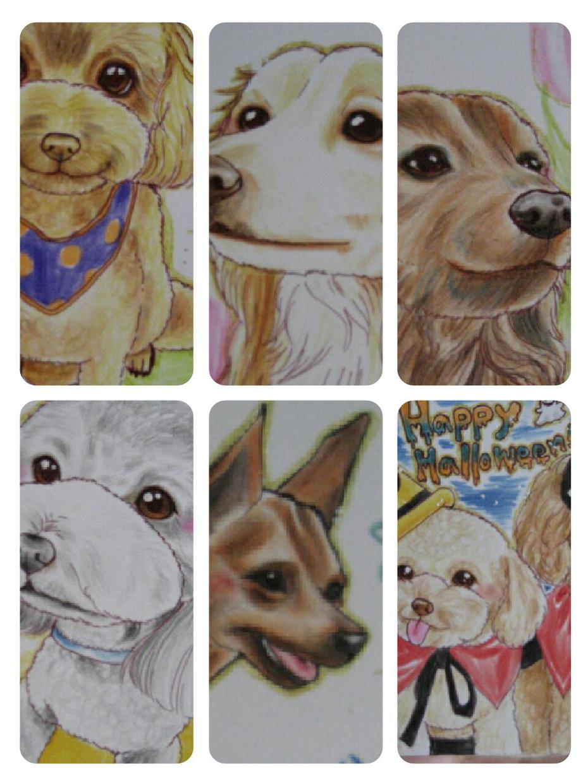 あなたの愛犬・愛猫を可愛い雰囲気で描かせて頂きます ☆お誕生日・イベント・プレゼントに♪