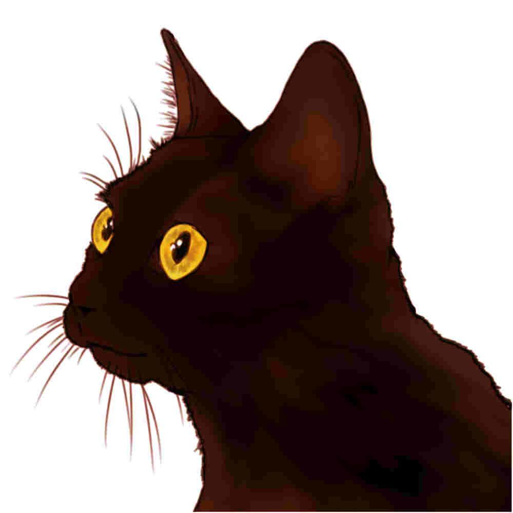 ペットの似顔絵、アイコン描きます ペットの似顔絵!リアルでもデフォでもどちらでもOKです!!