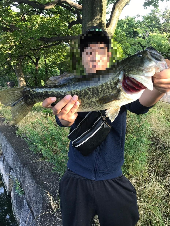 初心者さん歓迎!!魚釣りのいろは教えます 週4日~5日魚釣りしてるので、ある程度のことは分かります!