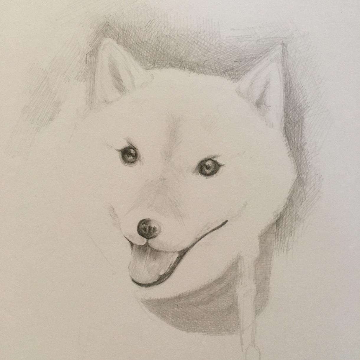 ペット似顔絵描きます あなたのペット描きます(人´∀`*)