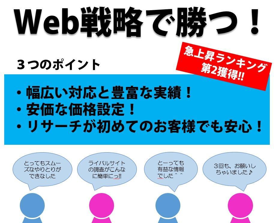 ライバルwebサイトのアクセス調査をします 分かりやすいレポートで一目でわかる! イメージ1