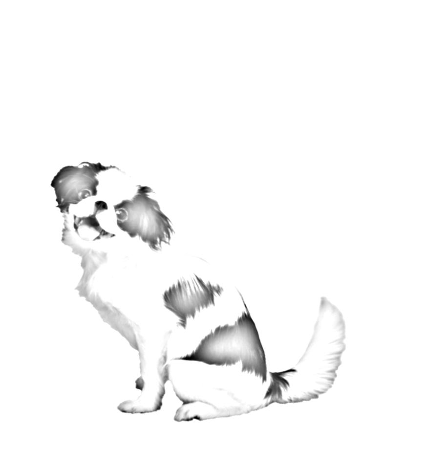 あなたのペットの水墨画風イラストを作成します 【著作権譲渡可能】可愛いペットの水墨画風イラストに!