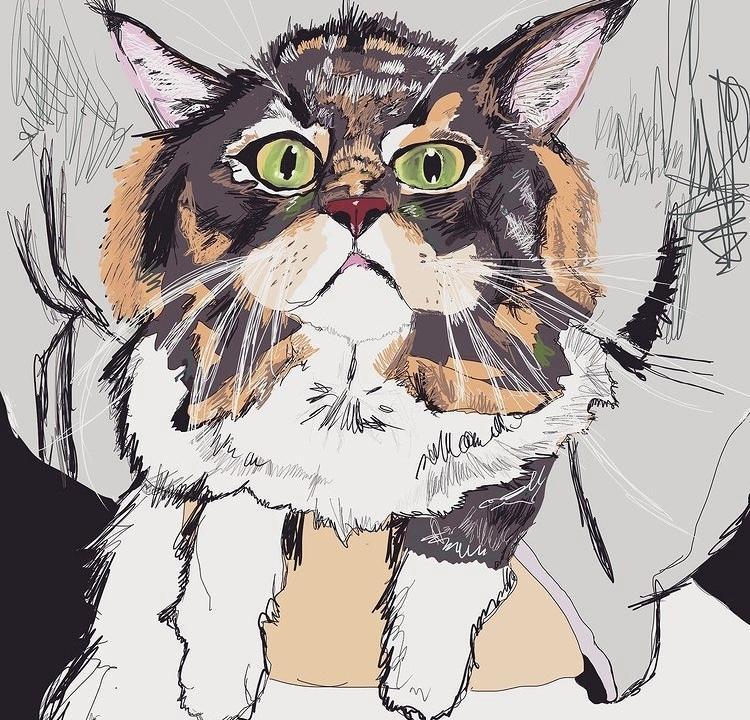 みなさんの猫ちゃんをお洒落なイラストにします 他には無いスタイリッシュで可愛らしいイラストに仕上げます✨ イメージ1