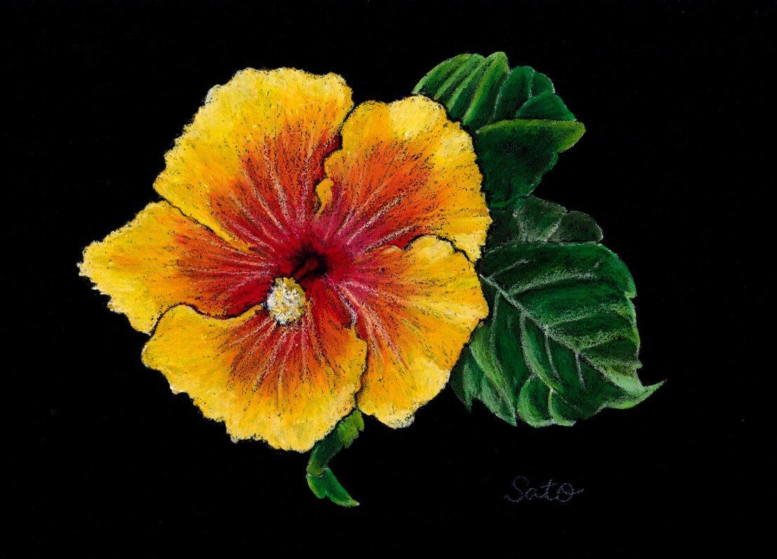 花の絵、描きます あなたのお好きな花を、チョークアートで描きます