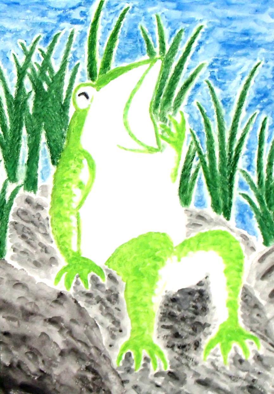 蛙好きな方にオススメします スマホの壁紙用、プロフィール画像用にオススメします。