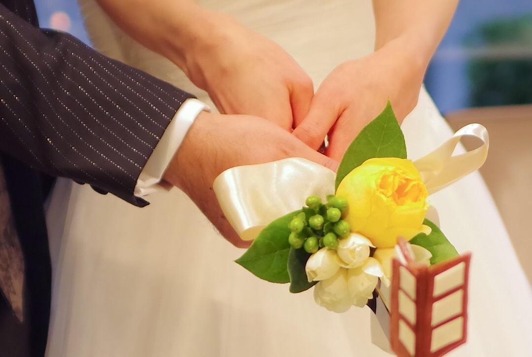 愛知県内で、写真撮影を行います 七五三などの各種イベントや記念撮影、商品やペットの撮影など
