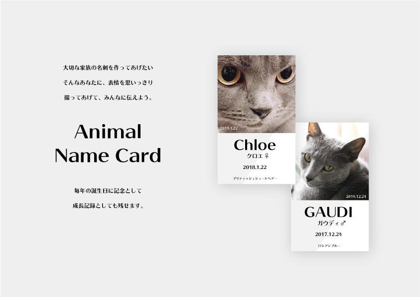 プロがペット用名刺カードデザインします 大切なペットの名刺、バースデーカードデザインします。