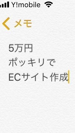 5万円ポッキリでECサイト(通販サイト)作ります ECサイトを作りたいけど予算が…という方