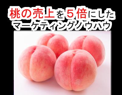 桃の売上を5倍にしたノウハウをPDFで提供します ★あなたも【キャッチコピー】で売上5倍を視野に入れる