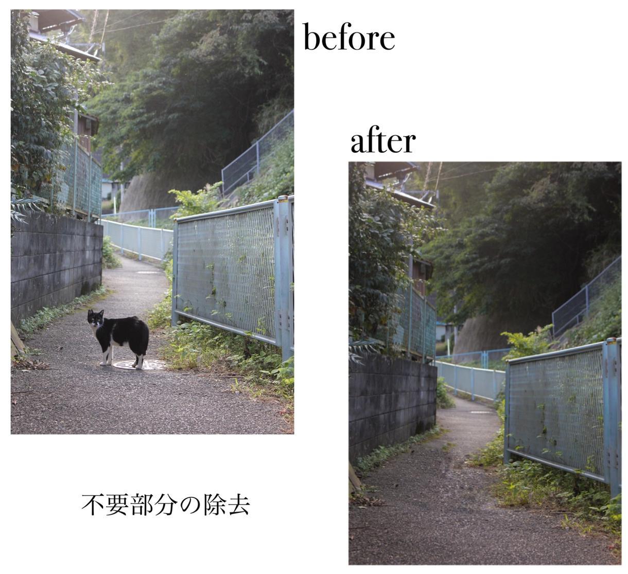 写真のレタッチ(編集)承ります 写真学科生がphotoshopを用いてレタッチいたします!