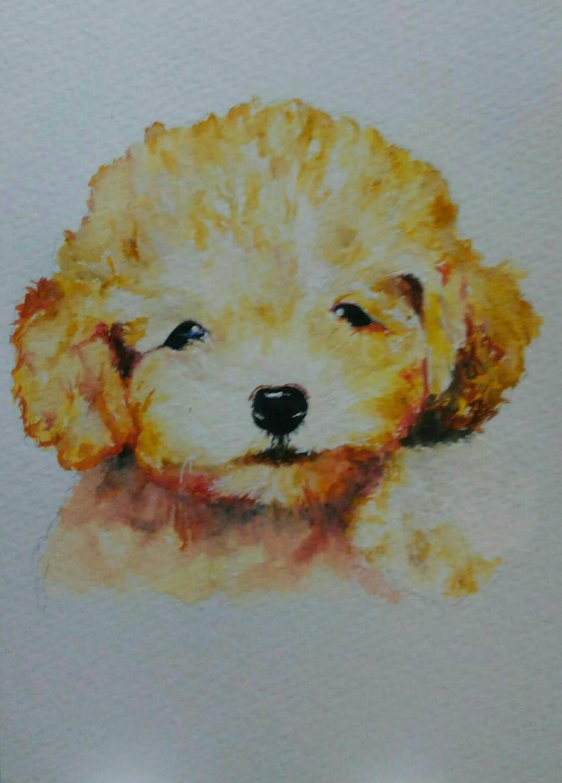 プレゼントに!ペットの似顔絵を水彩画で書きます 1週間で納品します。ペットのいる家庭へのプレゼントにどうぞ。 イメージ1