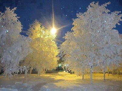 季節感を感じる写真を提供します 季節感を感じん写真を提供します。
