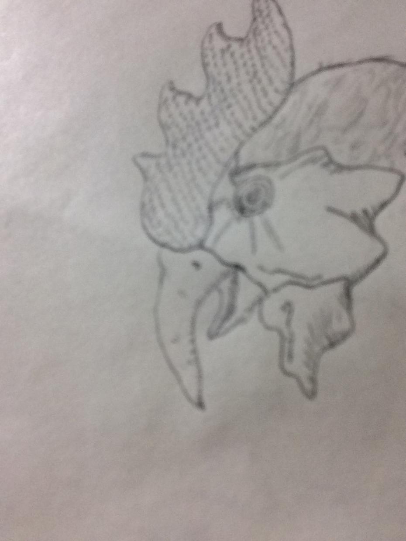 どんな絵でもペン一本で描きます シンプルな絵を求めているあなたにオススメ!