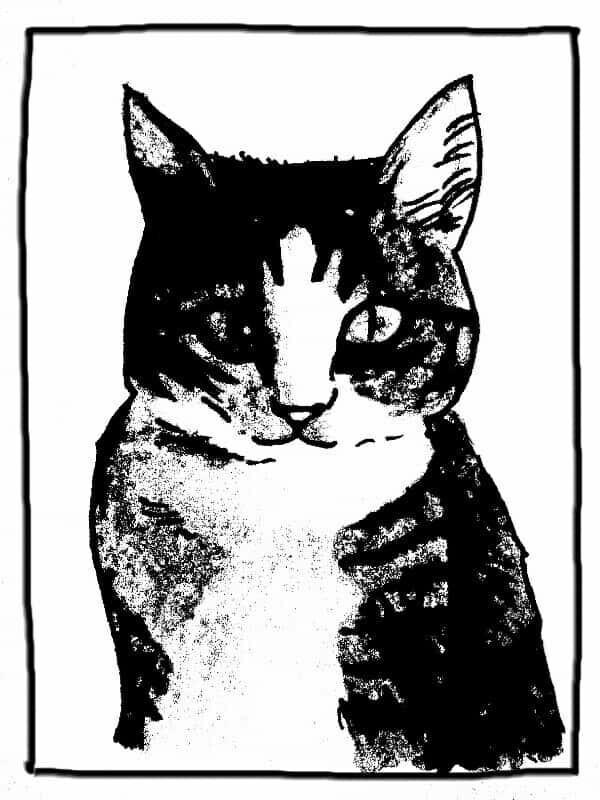 ペット等の動物のイラスト描きます アイコン、名刺、ブログの挿絵等、個人的な利用でプリントOK