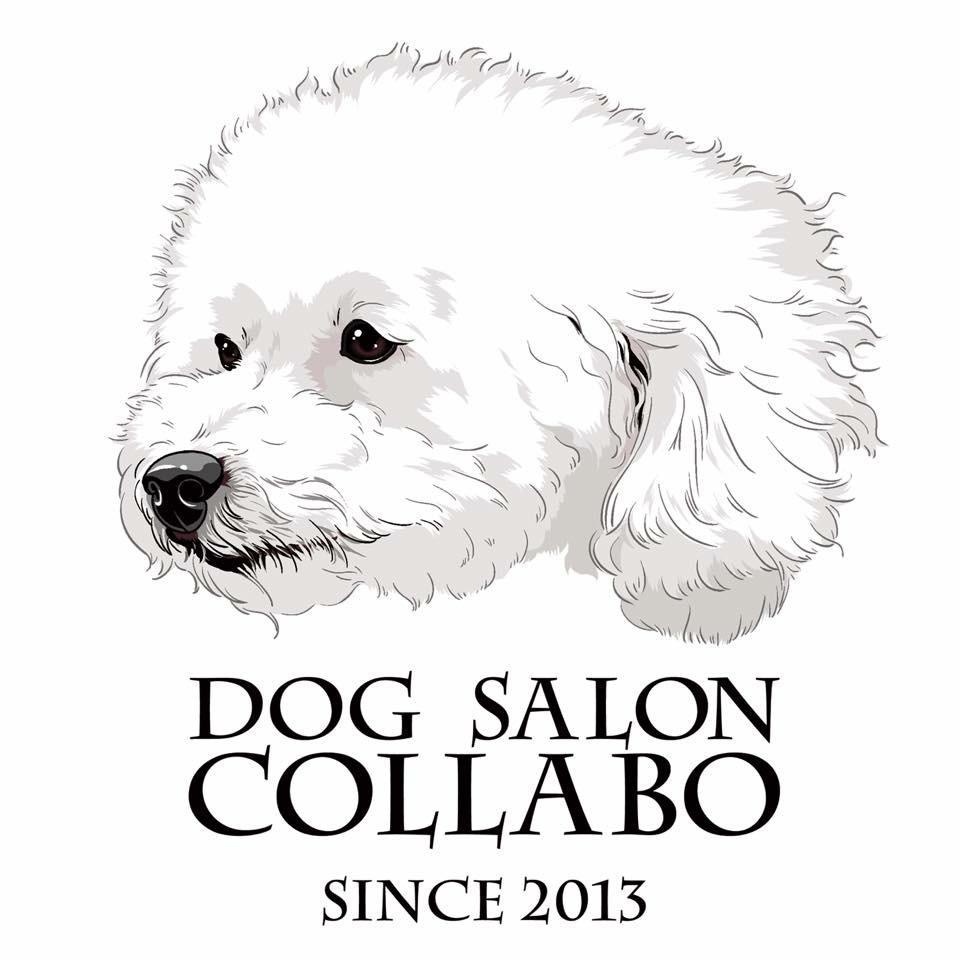 写真を元に犬の似顔絵を描きます グッズ、名刺、待ち受け、印刷してプレゼントなど