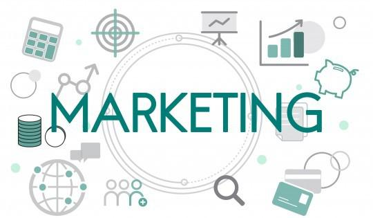 ワンコインwebサイト制作いたします 制作だけでなくそのあとまでマーケティングのお手伝い致します。