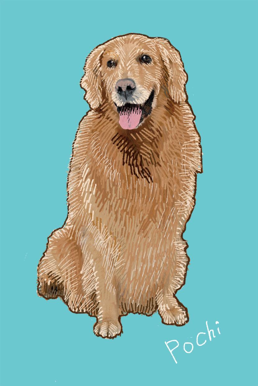 ペットのお写真を元に、リアルで暖かみのある刺繍タッチのイラストを描きます!