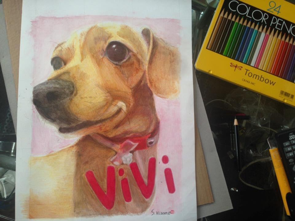 色鉛筆 水彩絵の具 ペット・動物の絵を描きます。