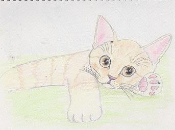あなたの愛猫ちゃんを描かせてください