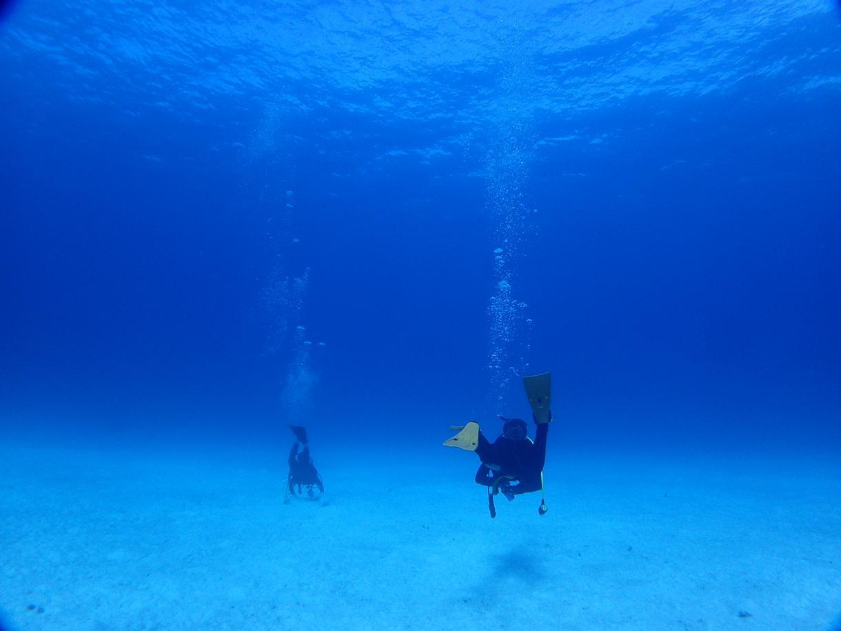 海/ダイビング/水中写真撮ってきます 海☆ビーチ☆水中写真☆代行をします