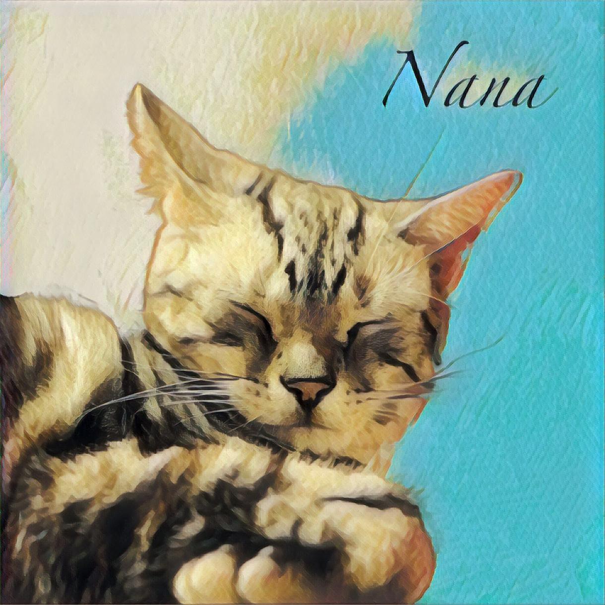 ペットの写真を絵画風に加工します SNSのアイコンや誕生日の記念などにどうぞ