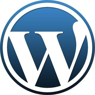 お好きなサブドメインであなた専用のWordPressブログを作成します。