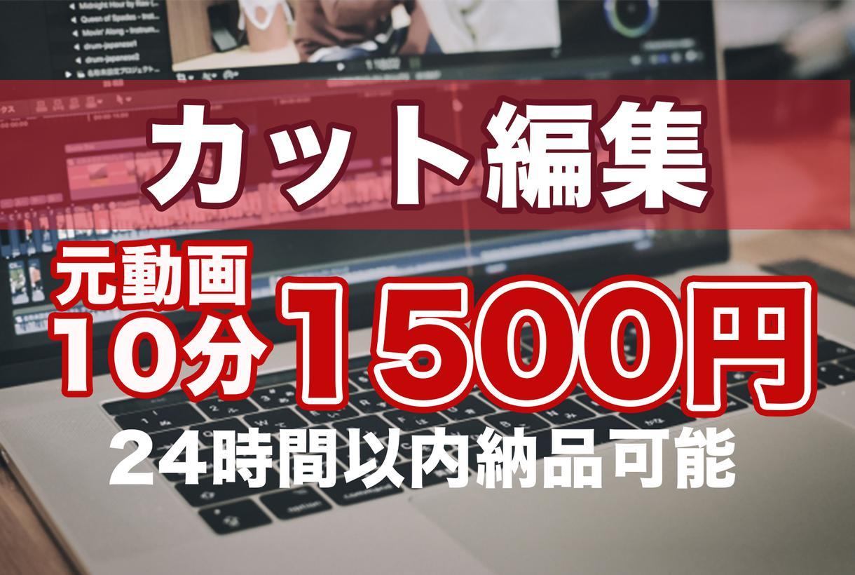 カット編集承ります 元動画10分まで1500円定額! イメージ1