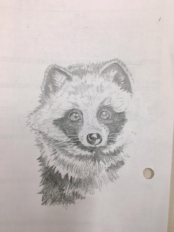 動物のイラスト、描きます 落書きくらいの感覚で描きます。初心者なのでお手柔らかに。