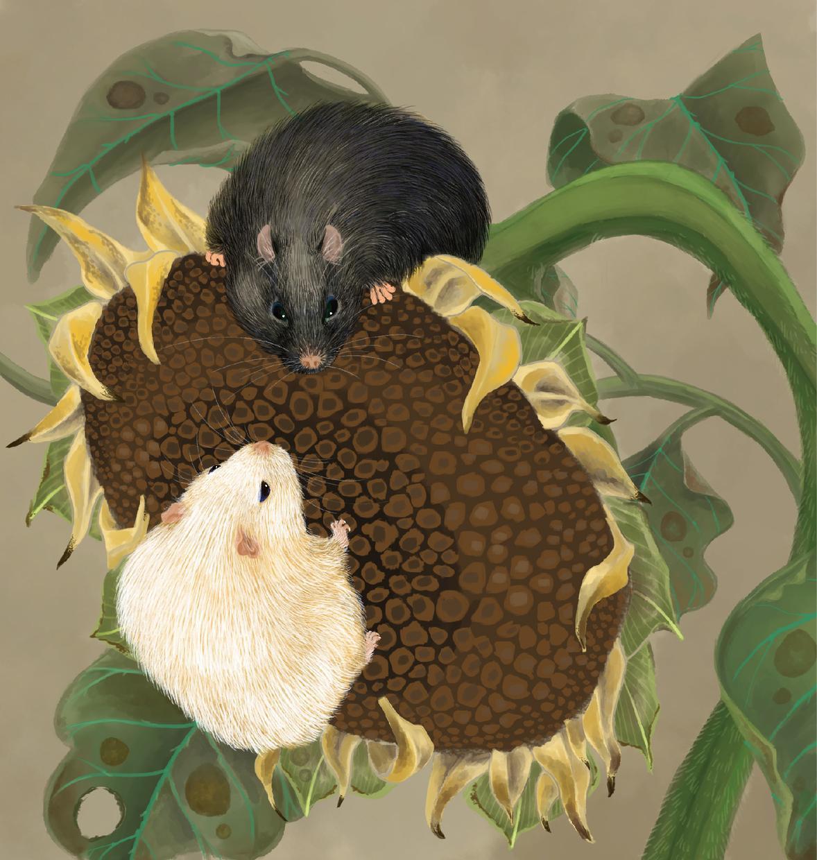 ハムスター・ウサギなどの小動物描きます ニッチな動物が好きなあなたへ アイコンやスマホ待ち受けに! イメージ1