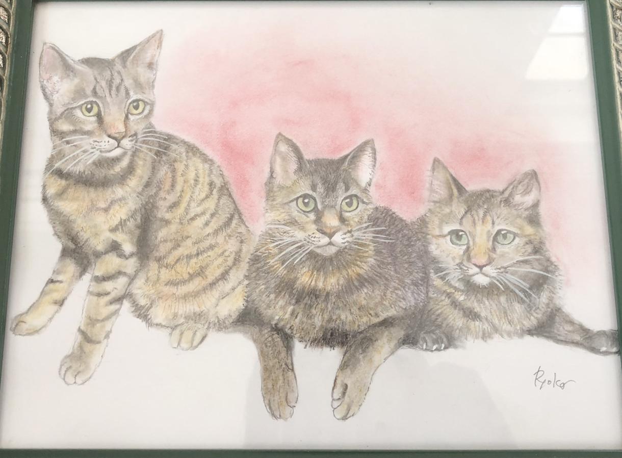 提供いただいた動物写真をオンリーワンの絵にします 動物全般、描けます。iPadでのデジタルも可。